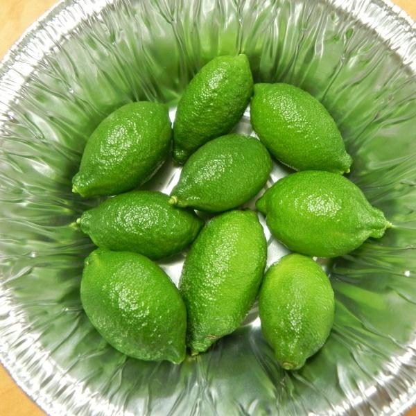 Giant Finger Limes 6-20-12 (1)