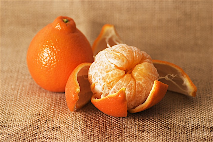 Minneola Honeybell Tangelo Dwarf Brite Leaf Citrus