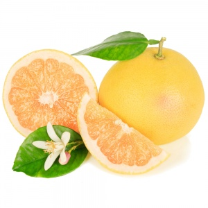 ducan_grapefruit_tree